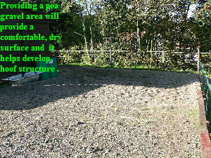 Providing a pea 
